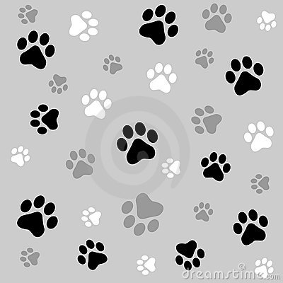 Free Paw Prints Background Stock Images - 6936104