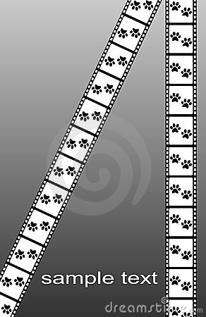 Paw prints motion movie background