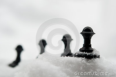 Pawn on snow