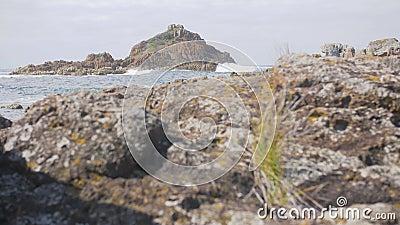 Paysage côtier australien - roches de mimosa banque de vidéos
