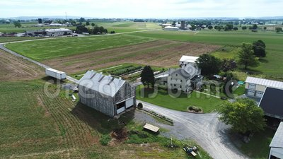 Paysage, champ, rural, ferme, amish, agriculture, récolte, ciel, Pennsylvanie, culture, été, campagne, maïs, cultivant, agriculte banque de vidéos