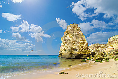 Paysage marin de plage rocheuse