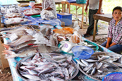 Pêchez le choix sur le marché local dans Khao Lak Image éditorial