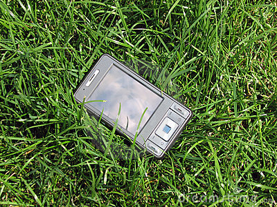 pda in the grass