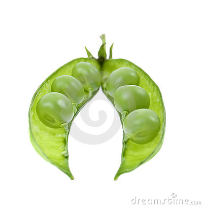 A pea green is in a pod