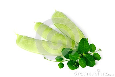 Pea isolated on white