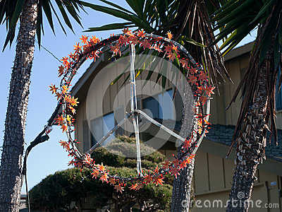 Peace Loving San Francisco