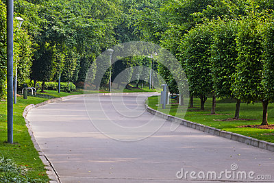 Peace  road  in  park
