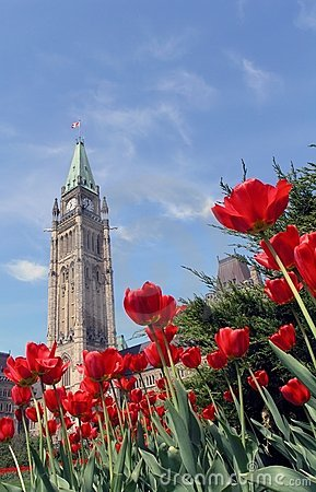 Free Peace Tower And Tulips In Ottawa Stock Images - 754204