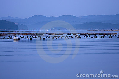 Peaceful blue sea gulf wave mountain morning
