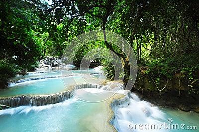 Peaceful cascade Waterfall