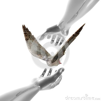 Peaceful dove and hands symbol