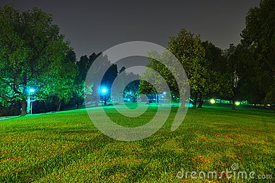 Peaceful park by night