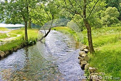Peaceful river scene