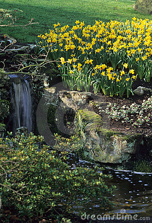 Free Peaceful Spring Rock Garden Royalty Free Stock Photography - 794777