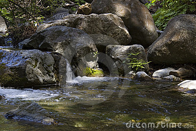 Peaceful stream