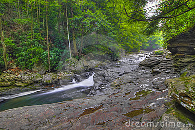 Peaceful stream in Pennsylvania