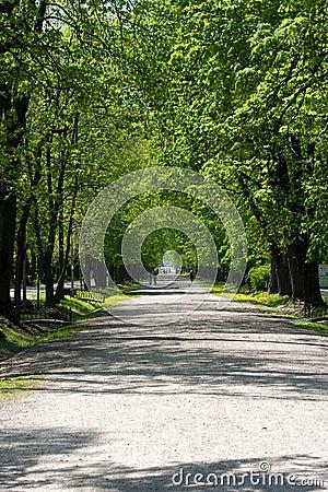 Free Peaceful Walk Stock Photo - 19321030