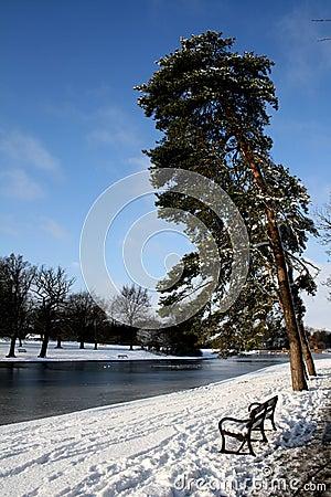 Peaceful Winter Scene