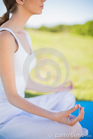 Free Peaceful Young Woman Sitting In Yoga Position On Her Mat Stock Photography - 33083632