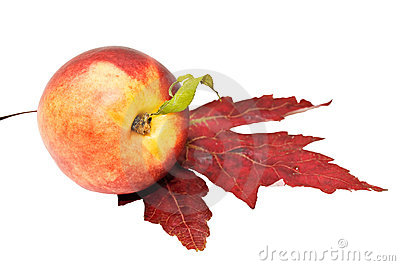 Peach and maple leaf.