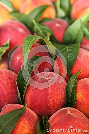 Free Peaches Stock Photos - 20627103