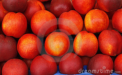 Peaches or apricots