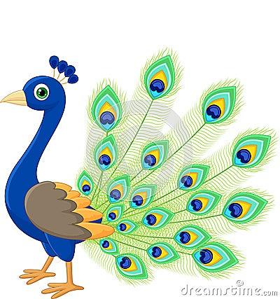 Peacock Cartoon Stock Vector Image 45746874