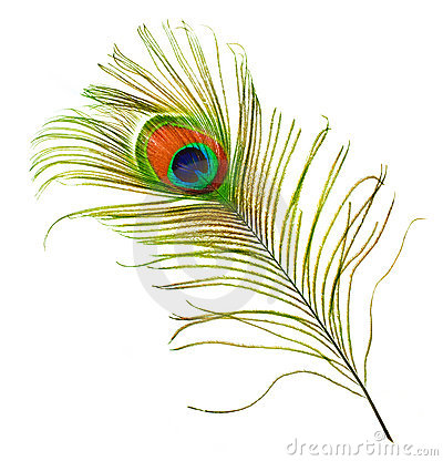 Free Peacock Feather Royalty Free Stock Image - 12283316