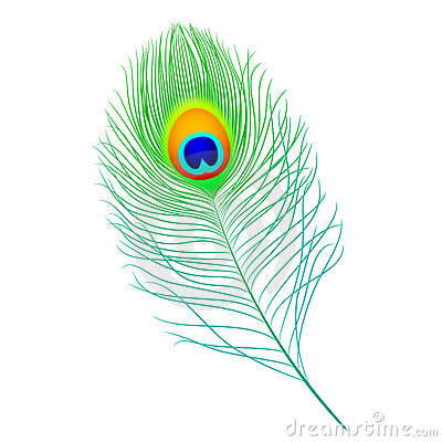 Free Peacock Feather Stock Photography - 14417422
