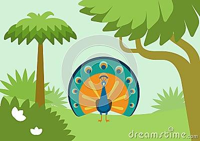 Peacock flowing tail flat design cartoon vector wild animal bird