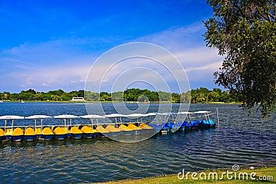 Peadal boat in lake