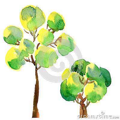 Peair d arbre
