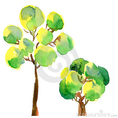 Peair da árvore