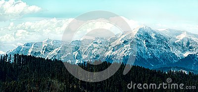 Peaks covered in snow under the cloudy sky behind a forest