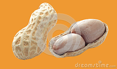Peanuts isolated