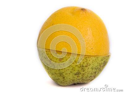 A pear or a lemon ?