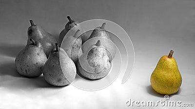 Pear,pears