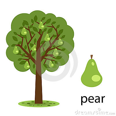 Free Pear Tree Royalty Free Stock Image - 15620706