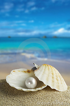 Free Pearl Stock Photography - 9605332