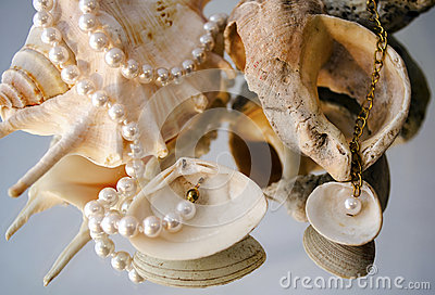 Pearl necklace over shells