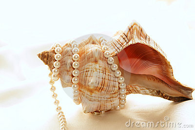 Pearls wrapped around shell