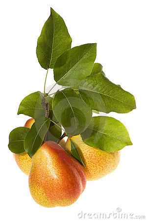 Pears and green leafs