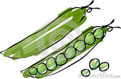 Peas sketch