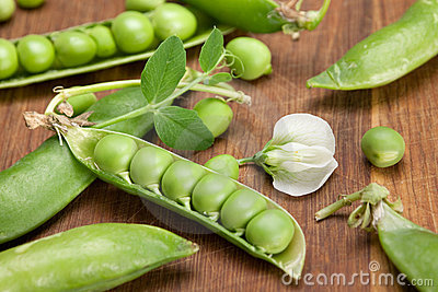 Peas vegetable with flower
