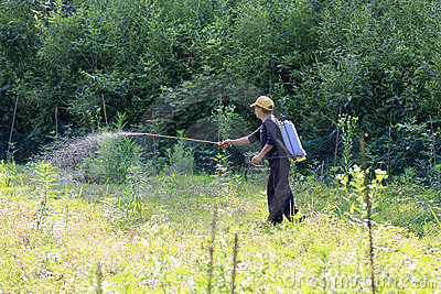 Peasant woman spraying herbicides Editorial Photography