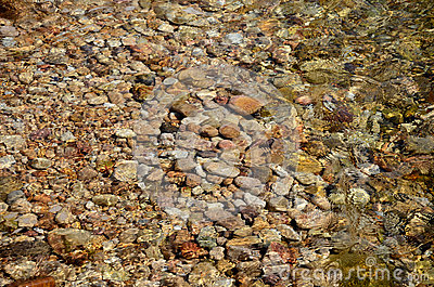 Pebble and water ripple