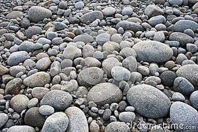 Pebbles on Pebble Beach