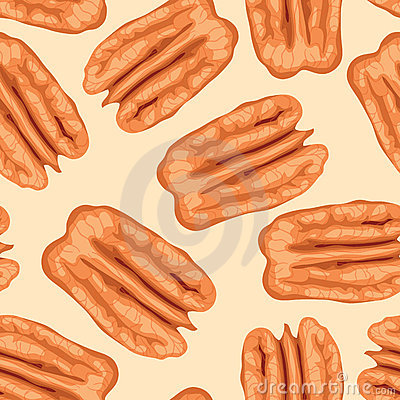 Pecan nuts. Seamless background.