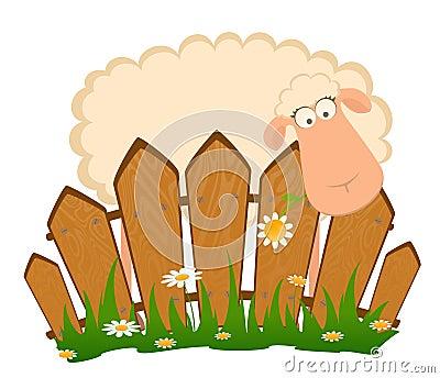 ... Libera da Diritti: Pecore sorridenti del fumetto dopo una rete fissa